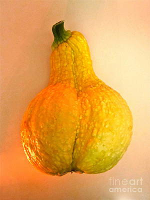 Nature Photograph - The Squash Dorcas Brought To Dinner by Sean Griffin