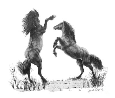Wild Horse Drawing - the Stand by Marianne NANA Betts