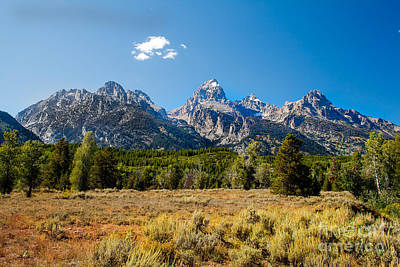 The Tetons Mountains Print by Robert Bales