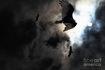 Edgar Allan Poe Photograph - The Vultures Have Gathered In My Dreams . Version 2 by Wingsdomain Art and Photography