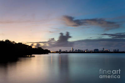 Miami Skyline Photograph - The Wilder Side Of Miami by Matt Tilghman