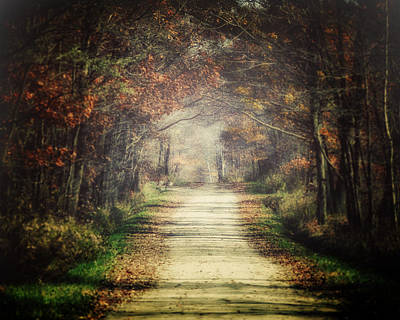 Western Chic Photograph - The Winding Road by Lisa Russo