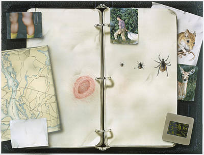This Artwork Is Called Lyme Disease Print by Christopher Klein