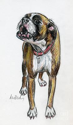 Boxer Dog Art Drawing - This Boxer Can Sing by Deborah Willard