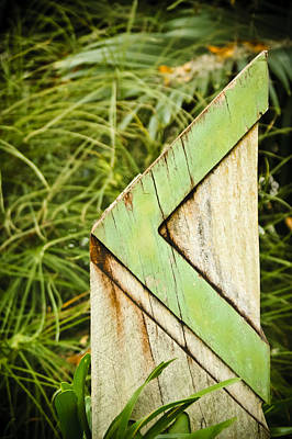 Directional Signage Photograph - This Way by Carolyn Marshall