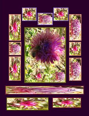 Collage Photograph - Thistle Bee Collage by Gretchen Wrede
