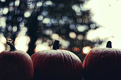 In A Row Photograph - Three Pumpkins by Erik T Witsoe