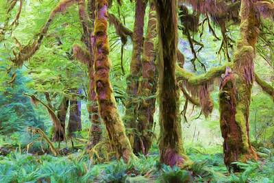 Through Moss Covered Trees Print by Heidi Smith