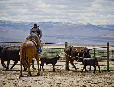 Cowboy Photograph - Throwin The Loop by Megan Chambers