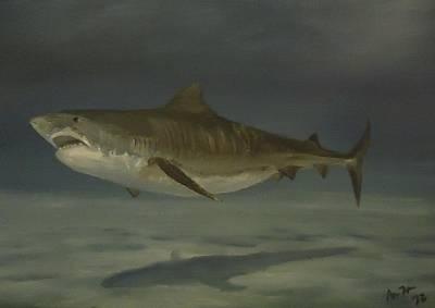 Shark Painting - Tiger Shark by Alexandros Tsourakis