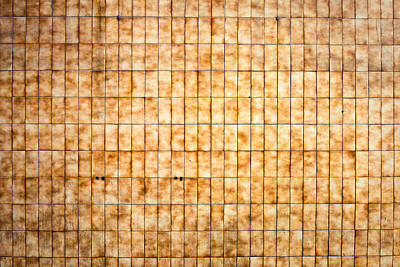 Brick Building Photograph - Tiled Wall by Tom Gowanlock