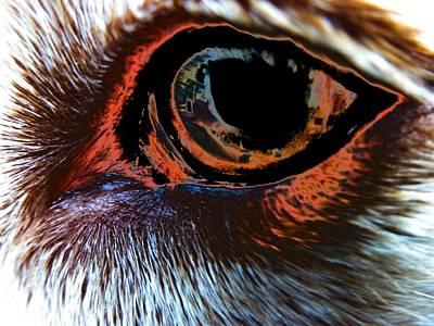 Lab Digital Art - Tobie Eye by Beth Akerman
