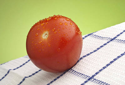 Tomato Print by Blink Images