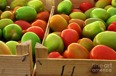 Food Stores Photograph - Tomatoes by Carlos Caetano