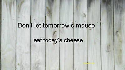 Photograph - Tomorrow's Mouse by B L Qualls