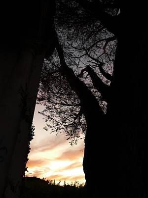 Photograph - Torreoia by Jl Zufiria