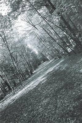 Trail Print by Ronald Mcduff