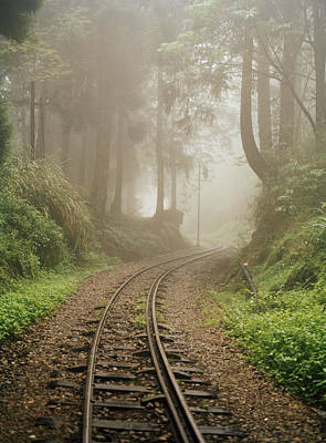 Train Tracks Found On The Forest Floor Print by Justin Guariglia