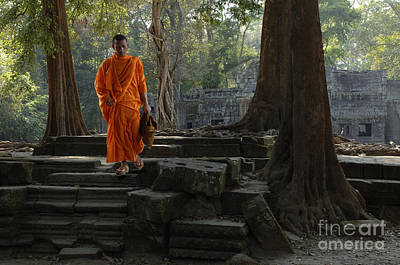 Buddhist Monk Cambodia Print by Bob Christopher