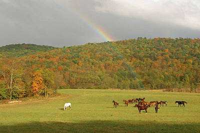 Horse Farm Maryland Photograph - Treasure At The End Of The Rainbow by Gregory Scott