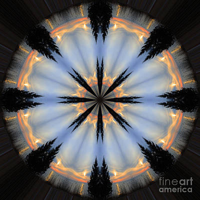 Tree Circle Print by Jamie Rabold
