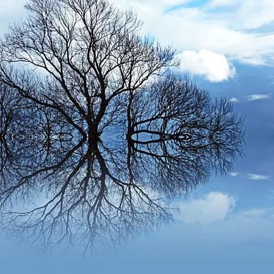 Balck Art Digital Art - Tree Of Life by Sharon Lisa Clarke