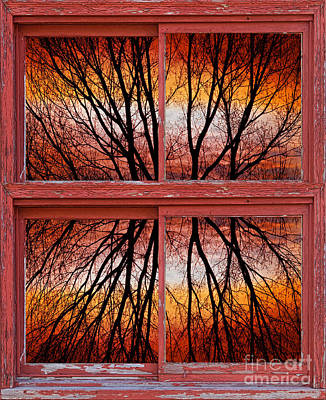 Picture Window Frame Photos Art Photograph - Tree Sunset Abstract Red Rustic Picture Window Frame by James BO  Insogna