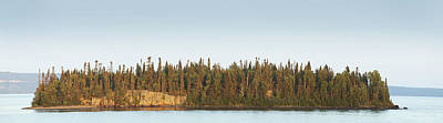 Trees Covering An Island On Lake Print by Susan Dykstra
