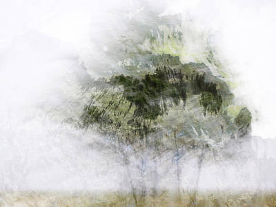 Trees Within Trees Print by Carol Leigh