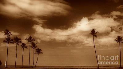 Tropical Mood Sepia Print by Cheryl Young