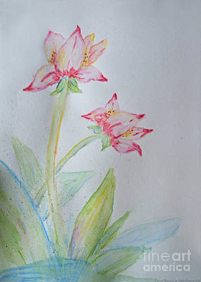 Tulip Duo I  Print by Debbie Portwood