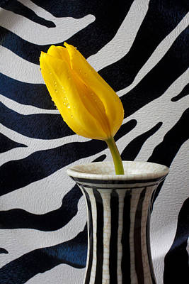 Tulip With Strips Print by Garry Gay
