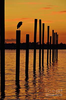 Twelve Poles At Sunset Print by Lynda Dawson-Youngclaus