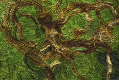 Disorder Digital Art - Twisted by Jack Zulli