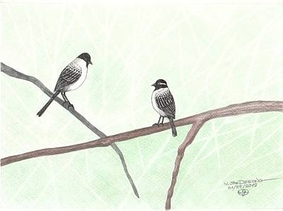 Two Chickadees Print by William Deering