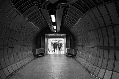 Underground Life 03 Print by Svetlana Sewell