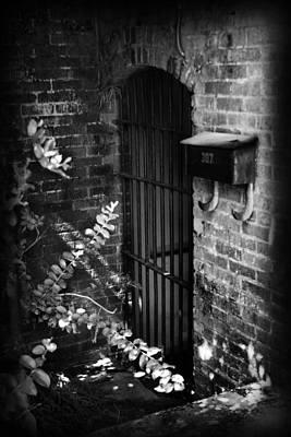 Ending Life Photograph - Untitled I by Kelly Hazel
