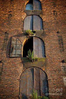 Vacant Windows Print by Cassandra Lemon