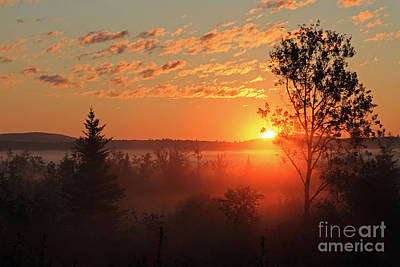 Valley Fog And Rising Sun Print by Lloyd Alexander