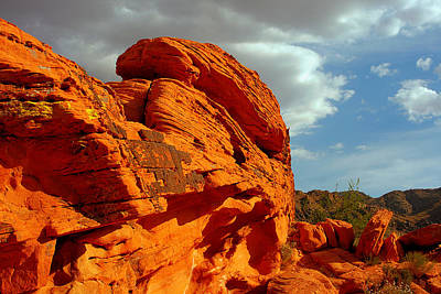 Surreal Photograph - Valley Of Fire - Born To Be Wild by Christine Till