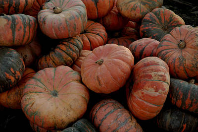 Basket Photograph - Varied Pumpkins by LeeAnn McLaneGoetz McLaneGoetzStudioLLCcom