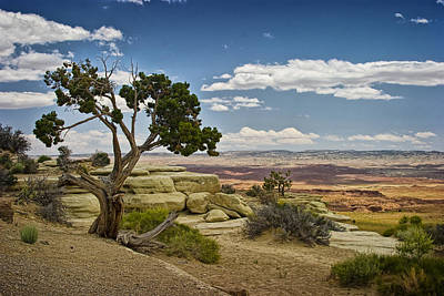 View From A Mesa Print by Randall Nyhof