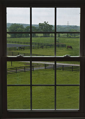 Horse Farm Maryland Photograph - View Of A Horse Farm by Stacy Gold