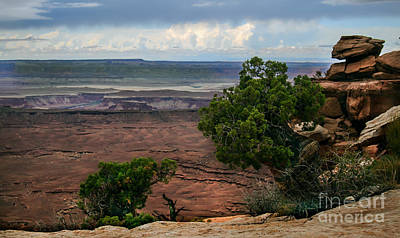 View Of Canyonland Print by Robert Bales