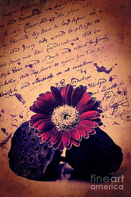 Vintage Passion Letters Print by Angela Doelling AD DESIGN Photo and PhotoArt