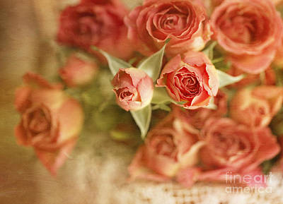 Flypaper Textures Photograph - Vintage Peaches N Creme Spray Roses by Susan Gary