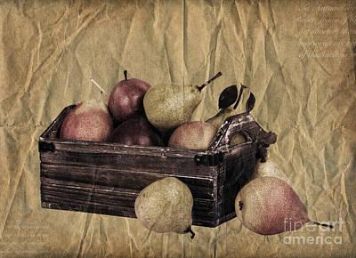 Vintage Pears Print by Jane Rix