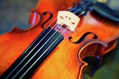 String Art Photograph - Violin by Sarah Beard Buckley