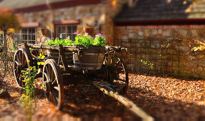 Wine Cart Photograph - Wagon Of Flowers by Andrew Dickman