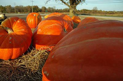 Squash Photograph - Wagon Ride For Pumpkins by LeeAnn McLaneGoetz McLaneGoetzStudioLLCcom